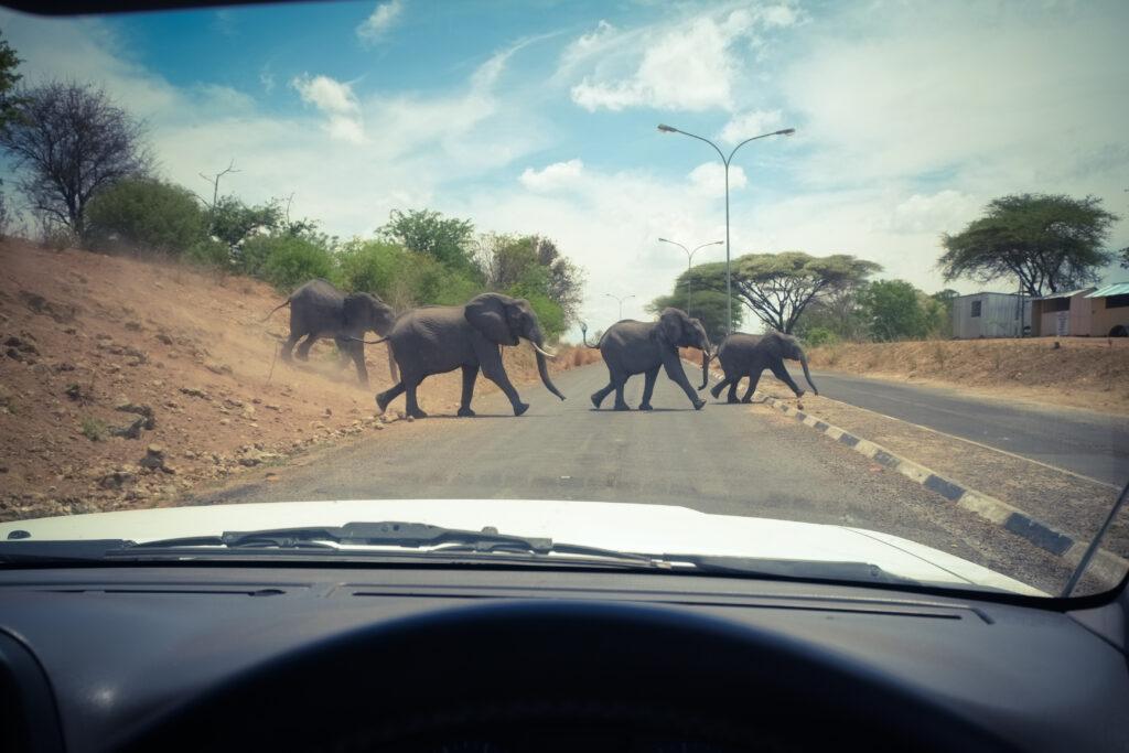 Passage de frontière entre la Namibie et le Botswana
