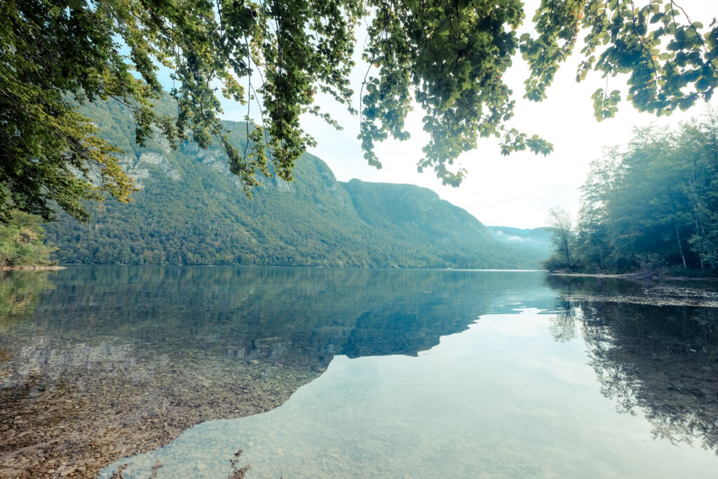Le lac de Bohinj, Slovénie